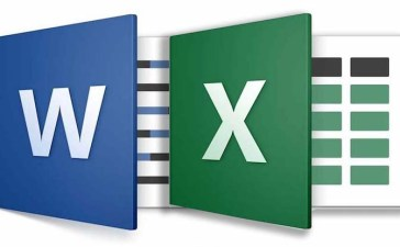 Copy Excel to word