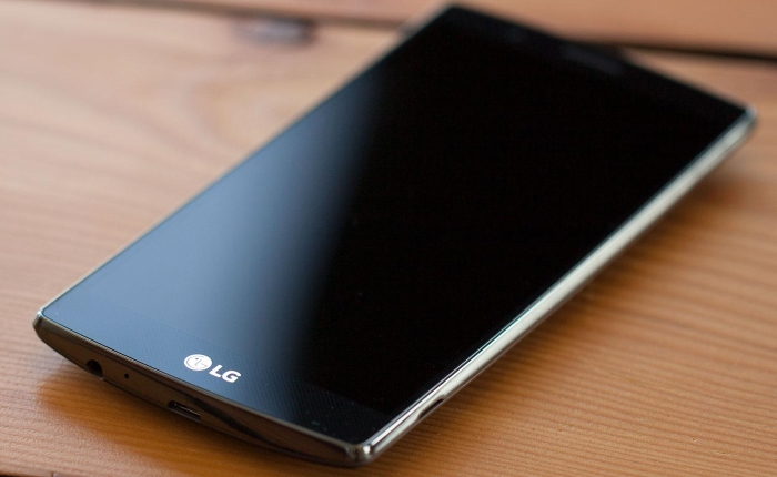 LG Revenues (1)