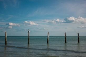 Ft Myers Beach (57 of 83)