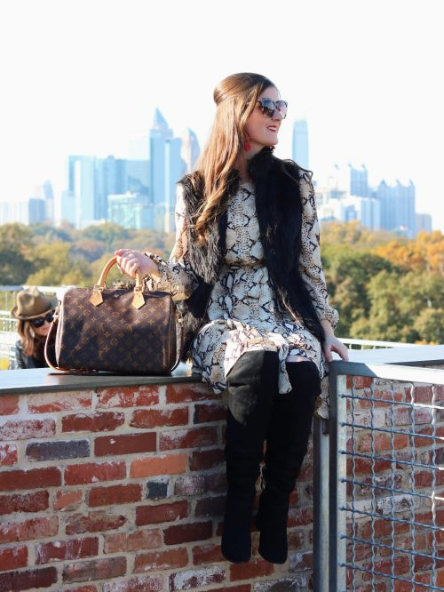 A Weekend Guide To Atlanta, Georgia | things to do in atlanta | things to do in atlanta for adults | atlanta restaurants | atlanta skyline | SheIn Self Tie Snake Print Dress | snake print dress outfit | ponce city market