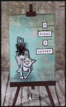 Spider (1)
