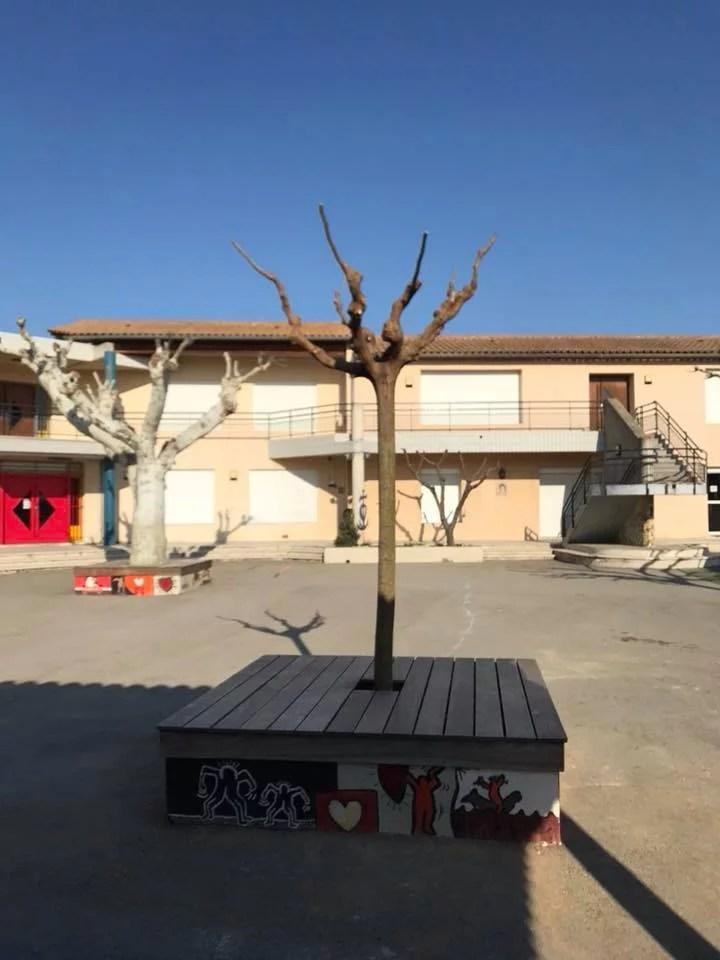 taille des jeunes arbres