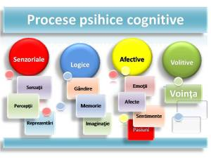 alt Procese psihice cognitive