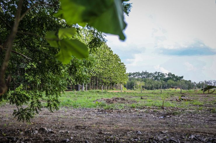 Empresa atua ainda com nove projetos socioambientais e parcerias com o município e a Ufac