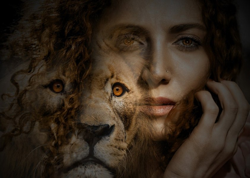 woman, lion, eyes