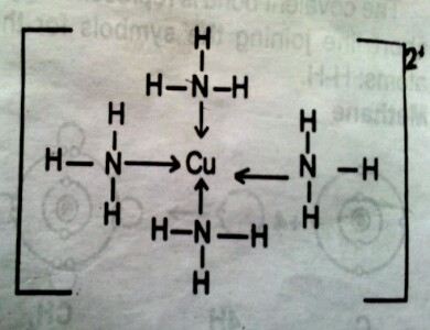 formation-of-tetraamine-copper-ii-ion-bond
