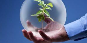 Экологический менеджмент и аудит
