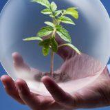 Экологический менеджмент: задачи