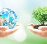 Проект постановления Правительства РФ «Об утверждении положения о порядке проведения государственной экологической экспертизы»