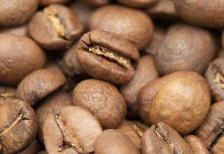 Consumo y Nutrición del café