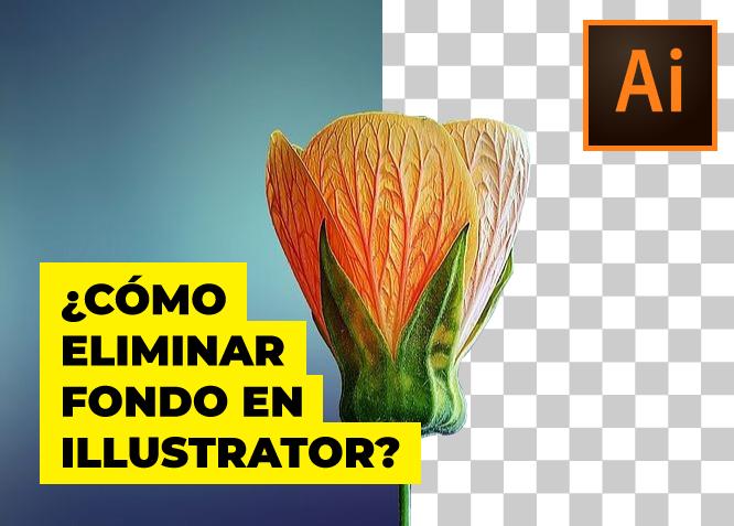 ¿Cómo eliminar fondo en Illustrator?