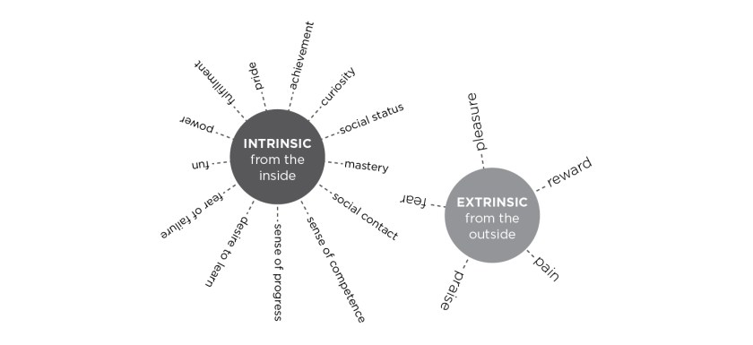 Figure F: Incentive Theory: Intrinsic + Extrinsic Motivation (adapted from Ryan + Deci, 2000)