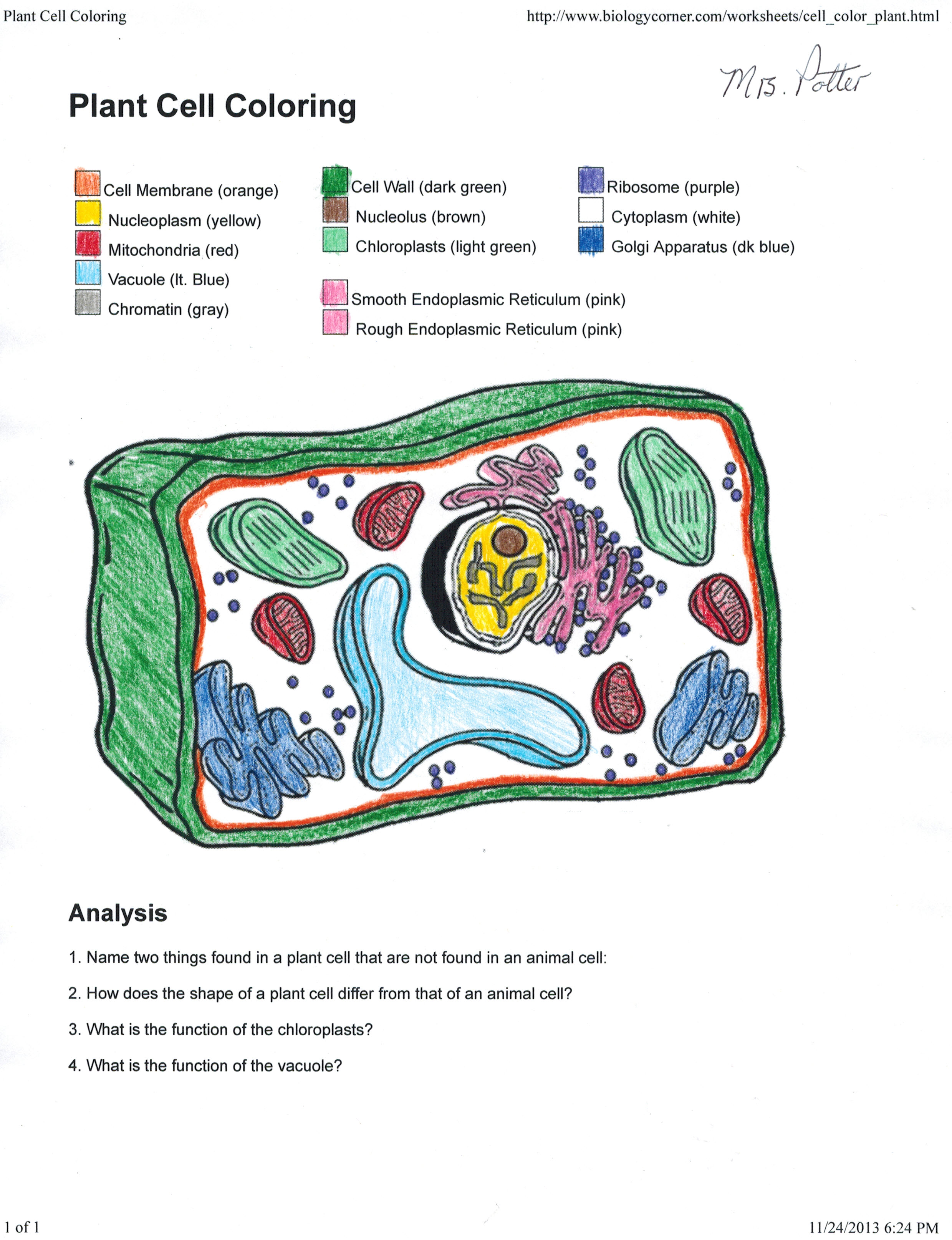 plant cell diagram black and white 3 way light switch wiring australia labeled worksheet