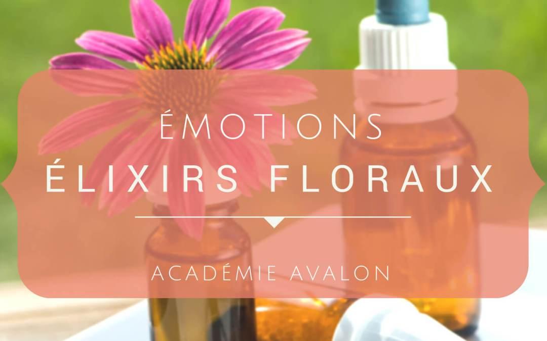 Cours Les élixirs floraux