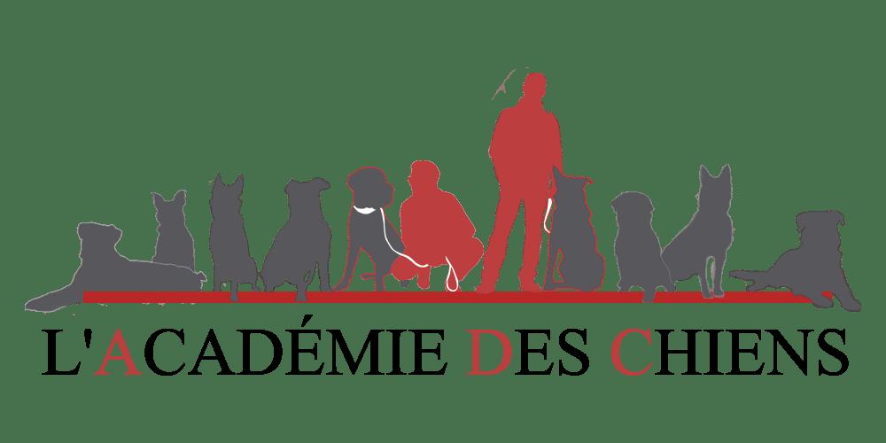 Académie des chiens