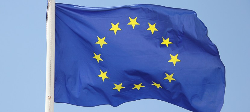 «Pour l'Union européenne» – Avis de l'Académie des sciences morales et politiques