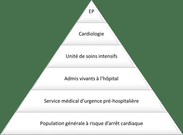 Figure 1 Intérêt d'une approche transversale de la mort subitePyramide schématisant les effectifs pris en compte par la focale de chaque spécialité, et ainsi l'importance des données manquantes de telles approches. EP : électrophysiologie