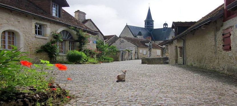Jean-Robert Pitte :  Comment conserver le patrimoine français en le faisant vivre ?