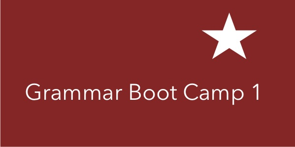 Grammar Boot Camp 1 course image