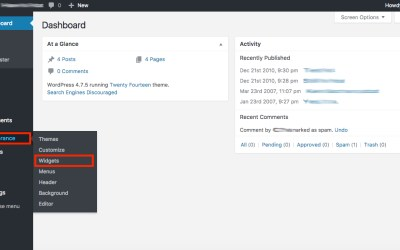 Adding the ClaimWizard Client Portal to Your WordPress Site