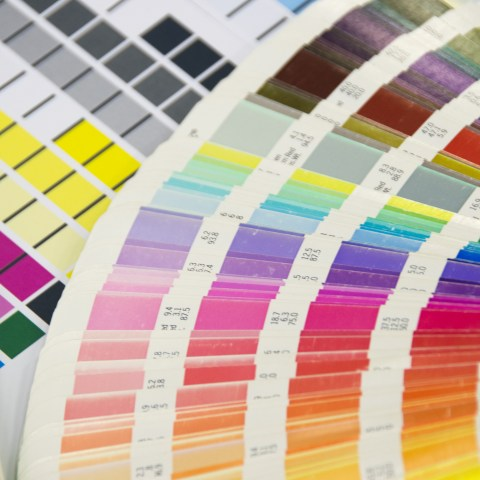 The Importance of Color Theory in Branding