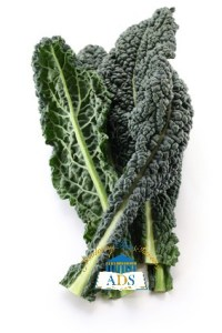 Curly Kale (1)