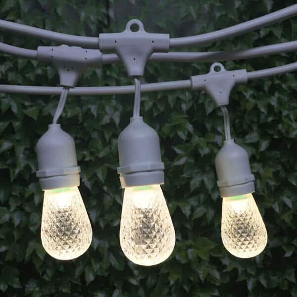 Bistro Lighting Rental Cincinnati