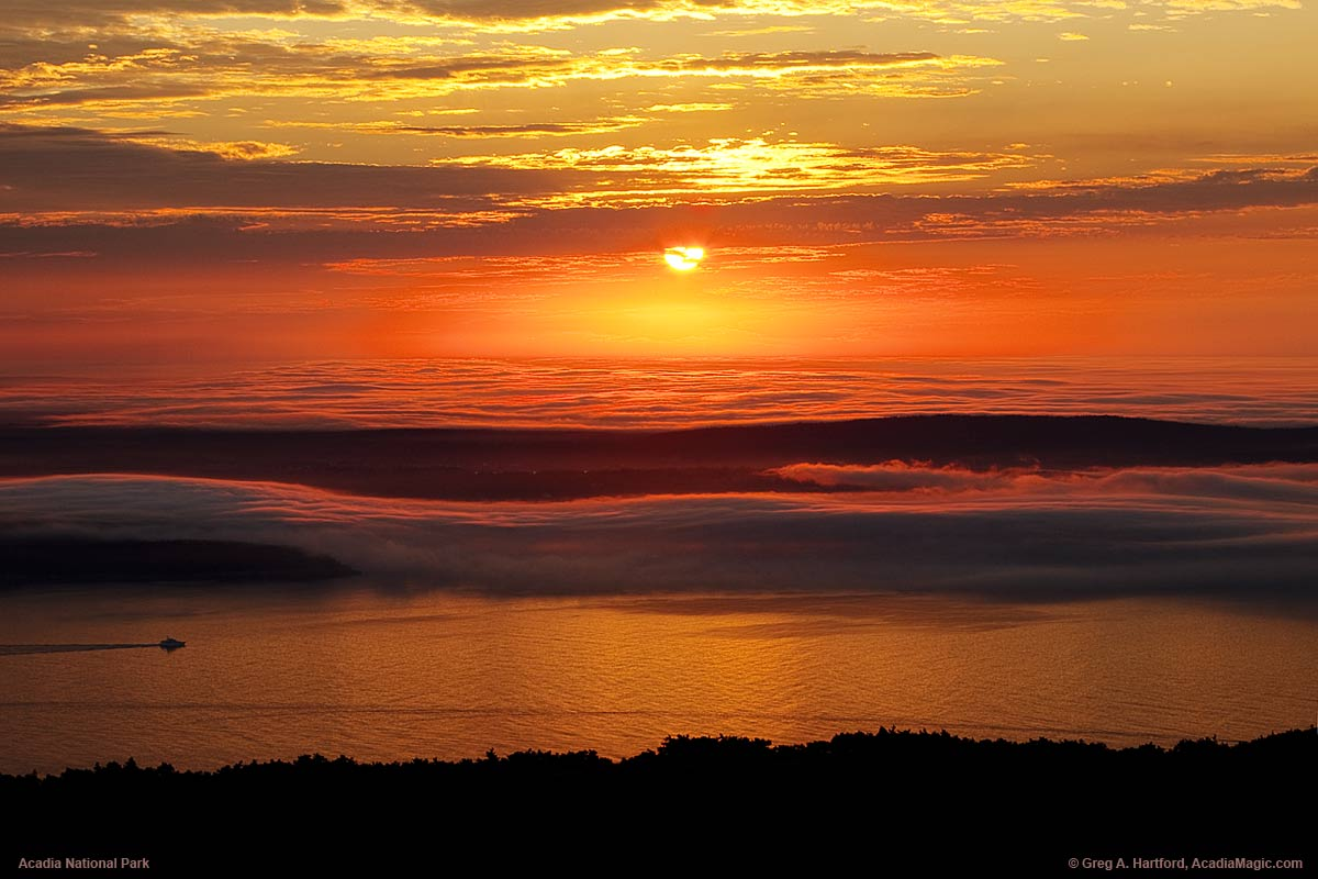 Free Fall Wallpaper For Laptop Cadillac Mountain Fog Over Schoodic Peninsula
