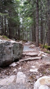 Quarry Trail in Acadia National Park