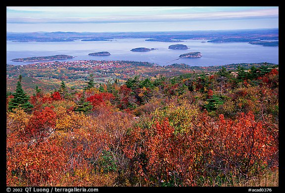 Autumn Fall Live Wallpaper Fall Foliage In Acadia National Park A Leaf Peeper S Delight