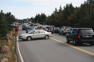 acadia national park traffic