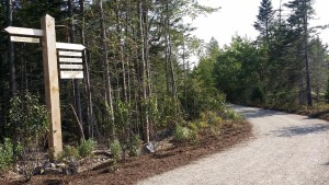 schoodic woods bike trails