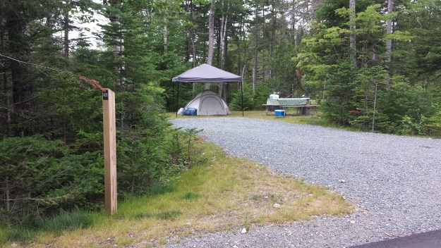 Camp site A-35 at Schoodic Woods in Acadia National Park.
