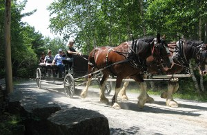 carriage roads of acadia