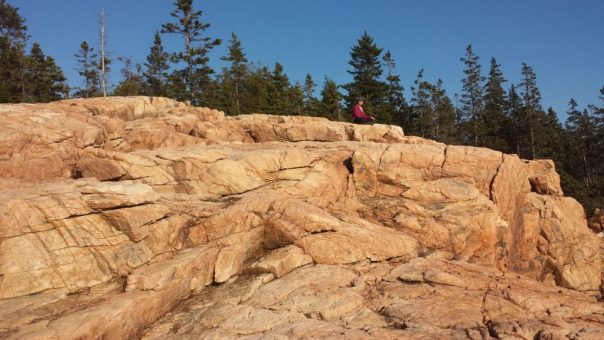 Pink granite glows in the October sun along the Ship Harbor Trail in Acadia National Park.