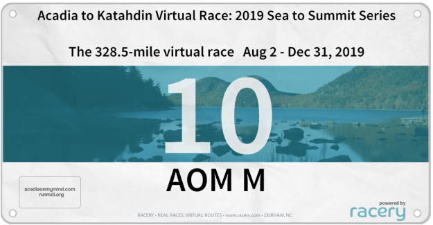 virtual racers