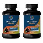 Pure Acai Berry Powder – ACAI BERRY 1200MG – US Made Antioxidant Blend – 2B 120C