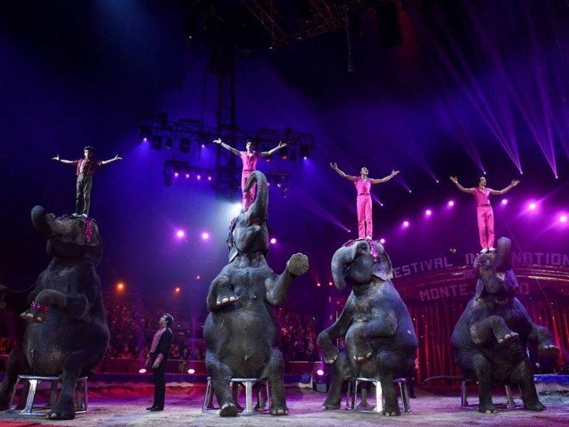 'Festival de Circo de Monte-Carlo' regressa à SIC