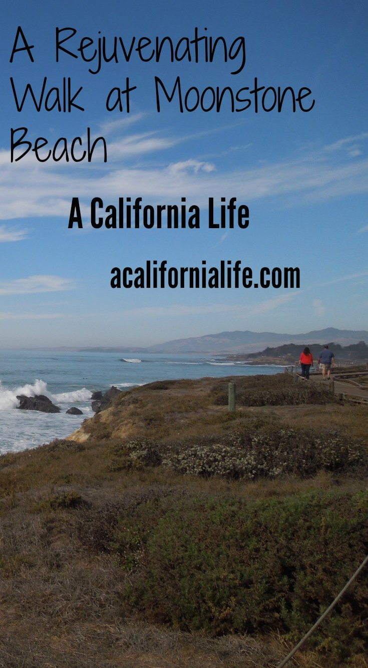 A Rejuvenating Walk at Moonstone Beach #photos #California #beach