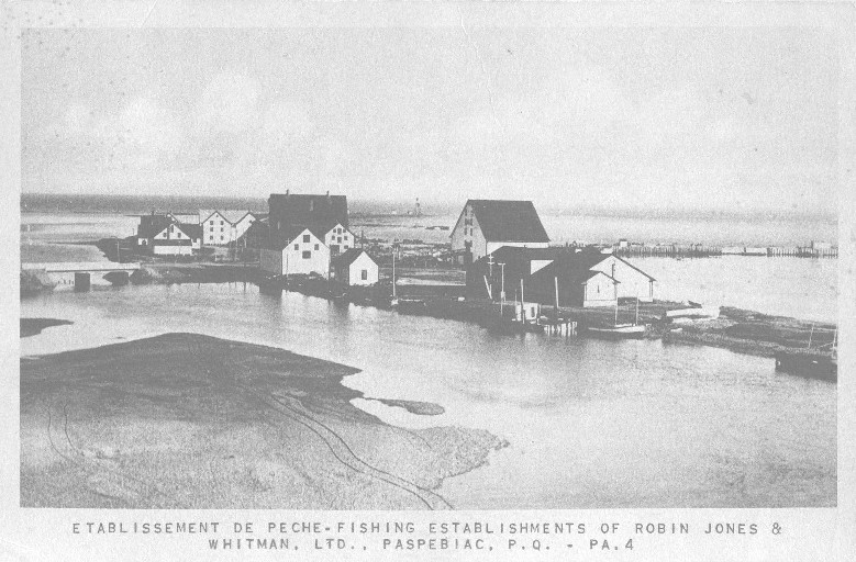 Vintage Postcard Paspebiac Gaspe Historical fishing community