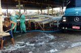 Prefeitura de Petrolina inicia mutirão de limpeza na feira da Cohab Massangano