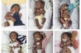 Mulher dá à luz sêxtuplos depois de tentar engravidar durante 17 anos