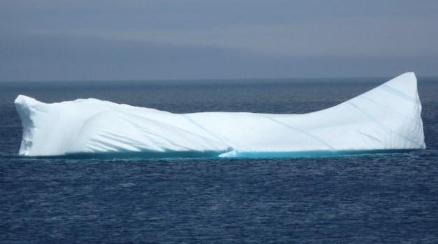 Obligatory iceberg shot, spotted near Cape Spear, NL