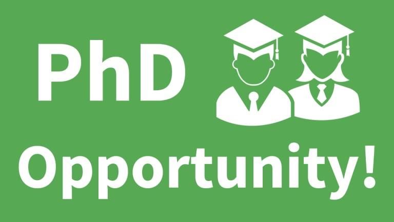 PhD Opportunity