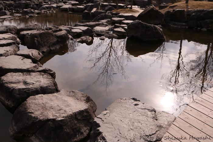 【Photo Album】けいはんな記念公園 & 水景園・2 | Acca's Website