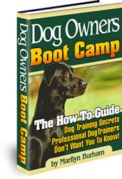 dog training Book, dog health Information, dog grooming, dog breeds, dog care, dog training Book, dog health Information, dog grooming, dog breeds, dog care, Offering an e-book resource for dog training, dog grooming, house training, and general pet care for all dog breeds.