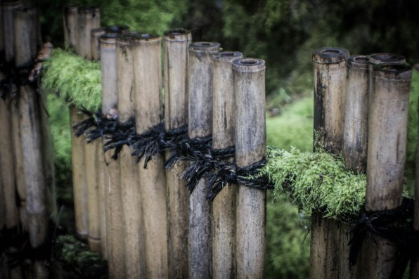 bamboo fence-1