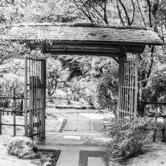 garden entry-1