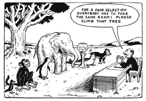 Do Standardized Tests Really Measure Students' Abilities?