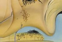 Salvador Dalí. Detall de El gran masturbador.